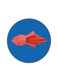 Meerestiere Falten